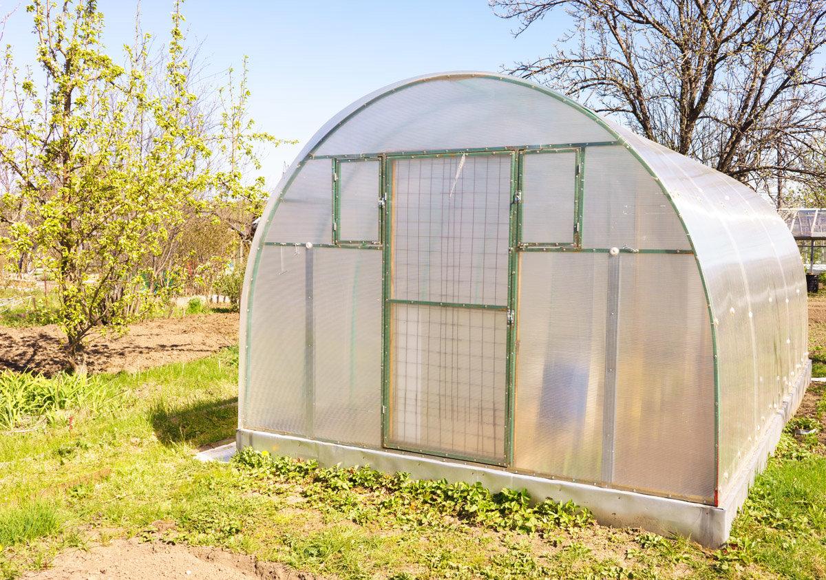 Правила установки теплицы на садовом участке