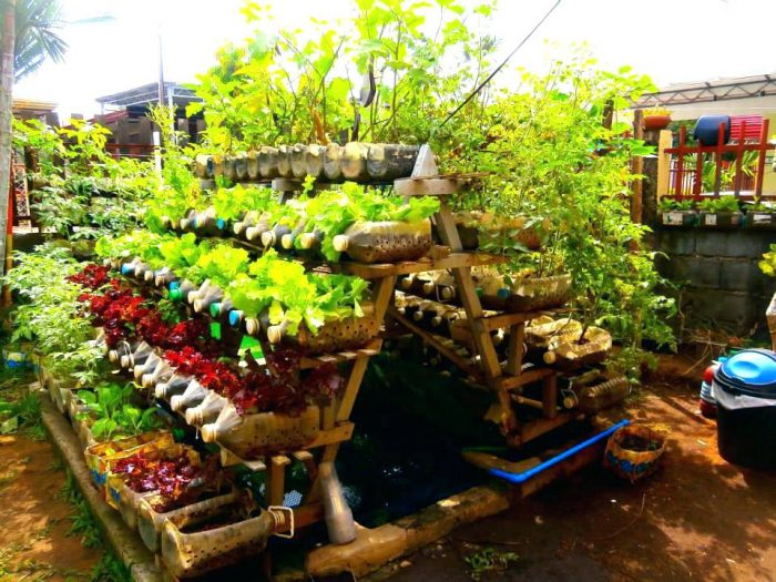 Огород в пластиковых бутылках