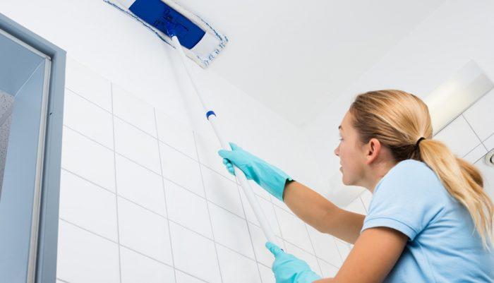 щетка для мытья потолков