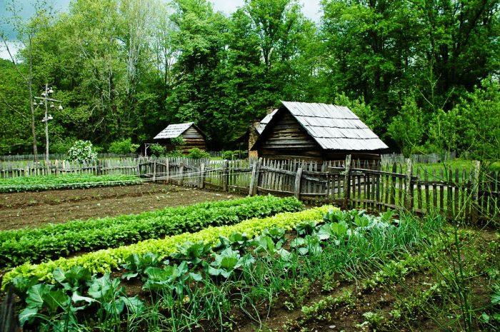Налог для сельских жителей