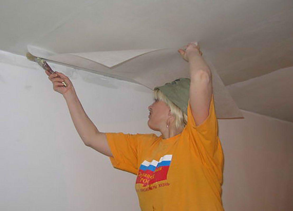 паутинка для ремонта потолка