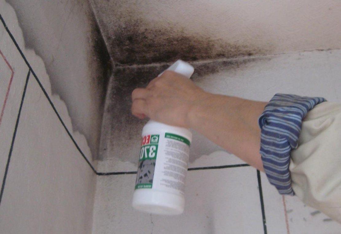 как удалить плесень с потолка