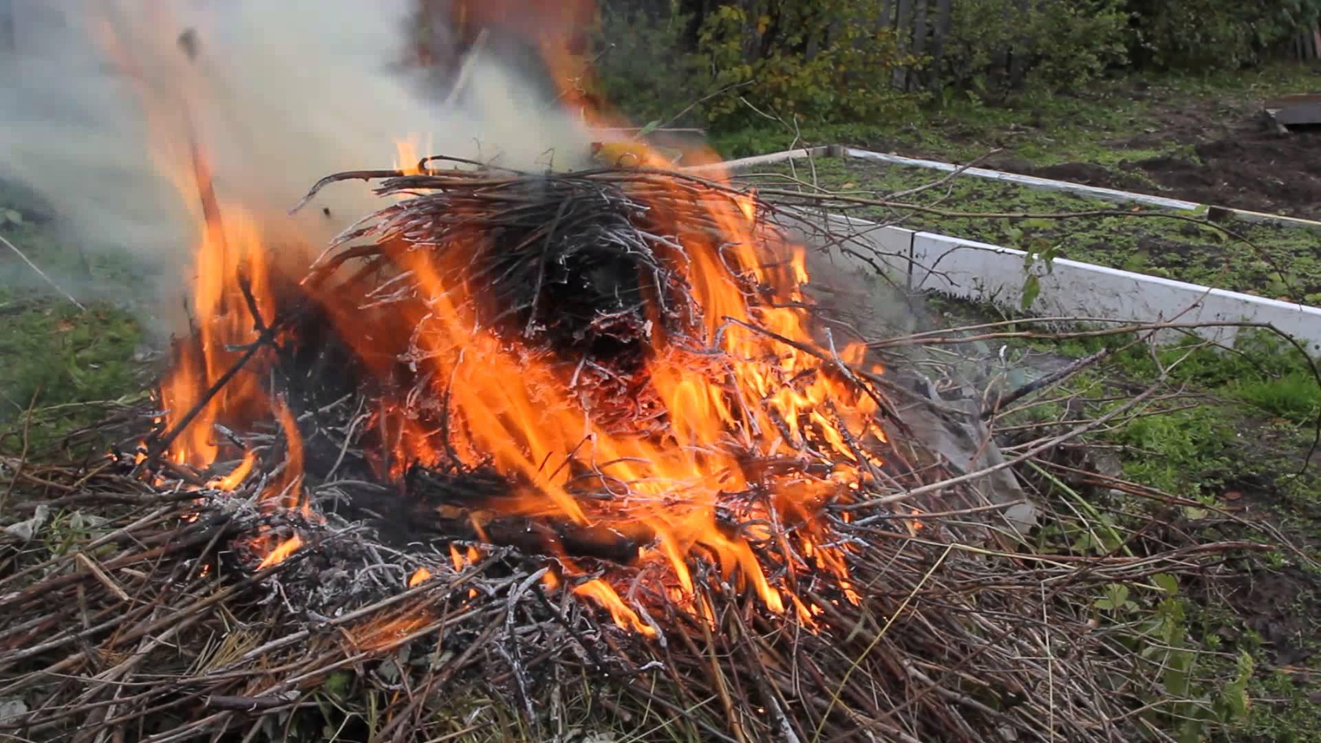Сжигание мусора на даче в 2019 году