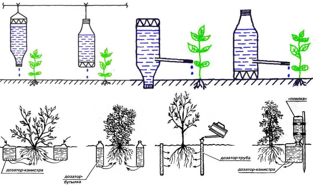 Пластиковые бутылки для капельного полива растений