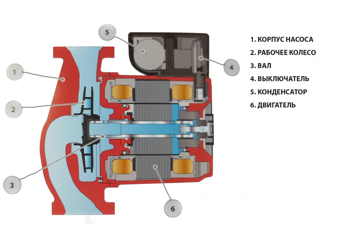 схема циркуляционных насосов