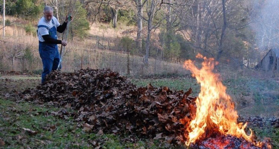 Когда штрафуют и сколько придется заплатить за сжигание мусора?