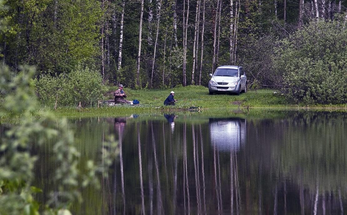 Въезд или подъезд к лесной зоне на машине