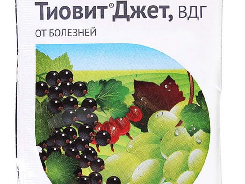 Тиовит-джет
