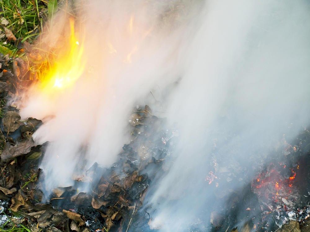 Как уберечь растения от заморозков дымом
