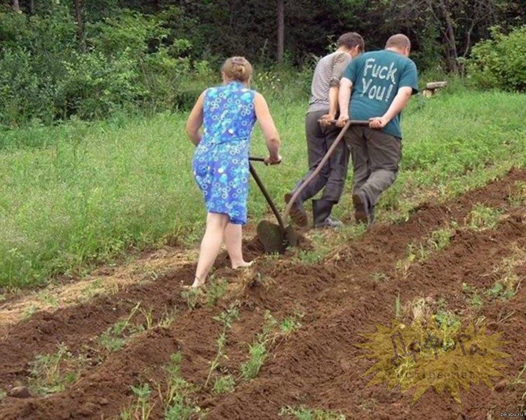 Вредные советы для огородников