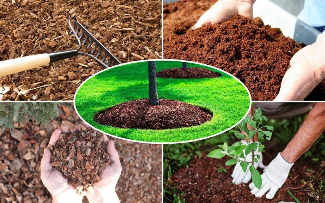 Как ускорить созревание компоста