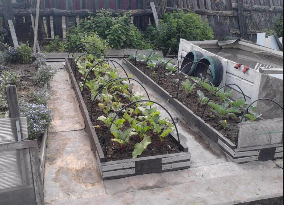 Для дачи и загородного дома