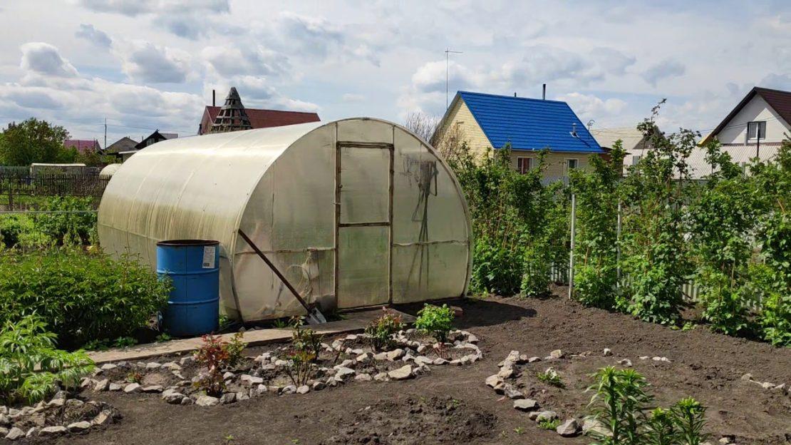 Спасение урожая от жары в теплице