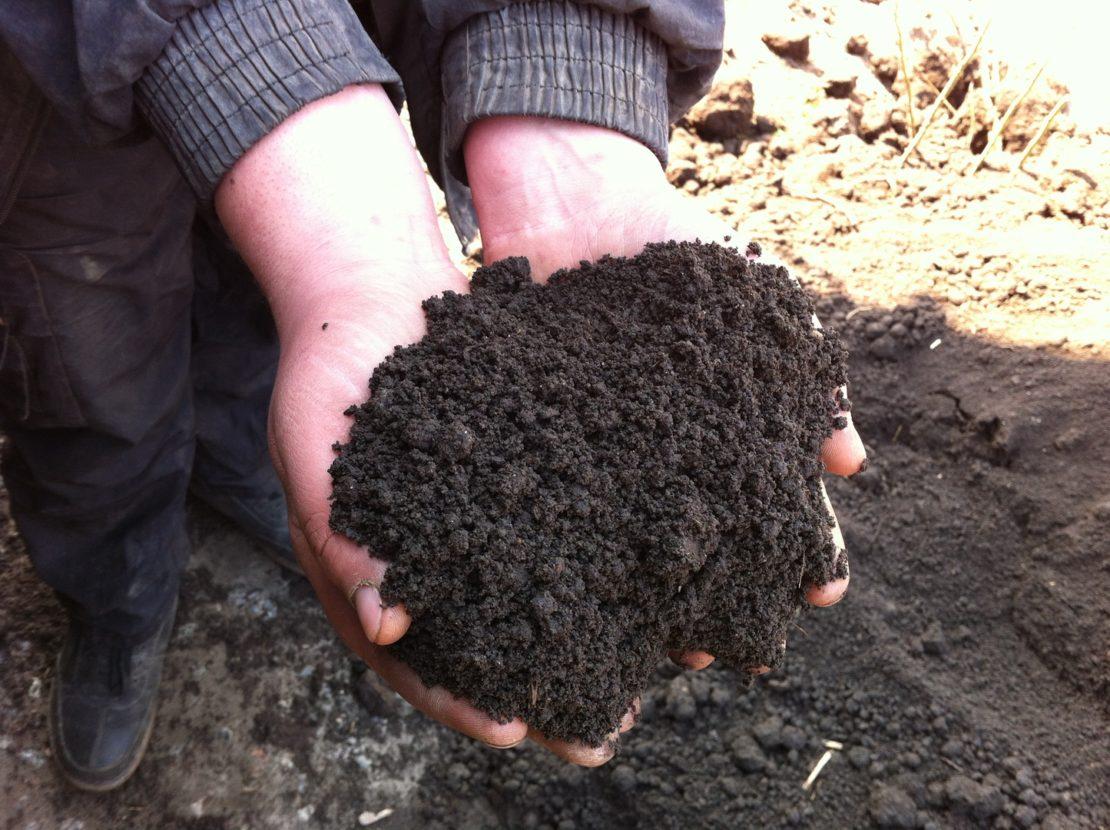 Как повысить плодородность земли