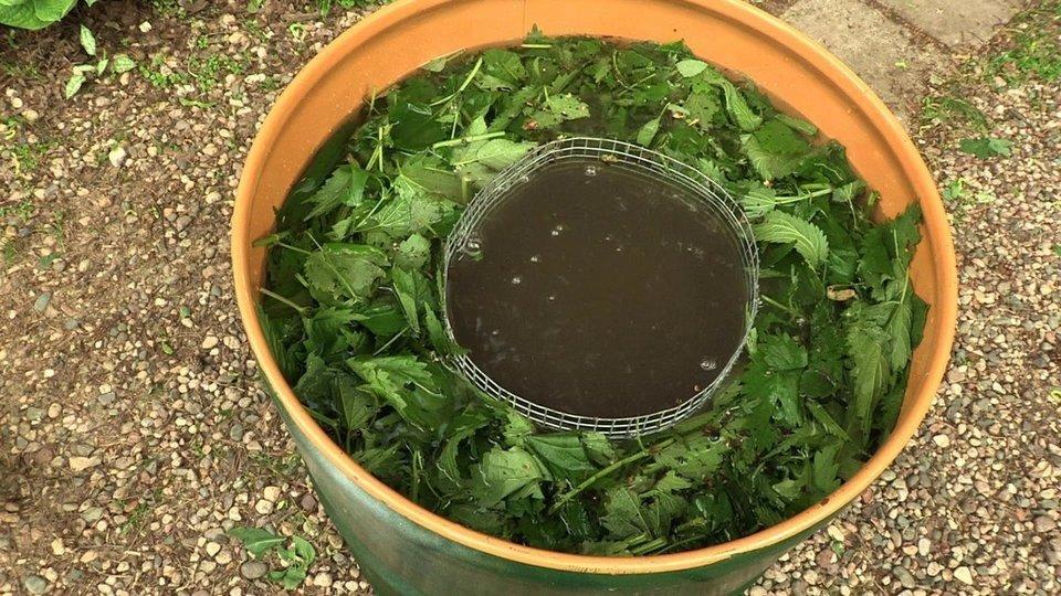 Удобрение из зелени