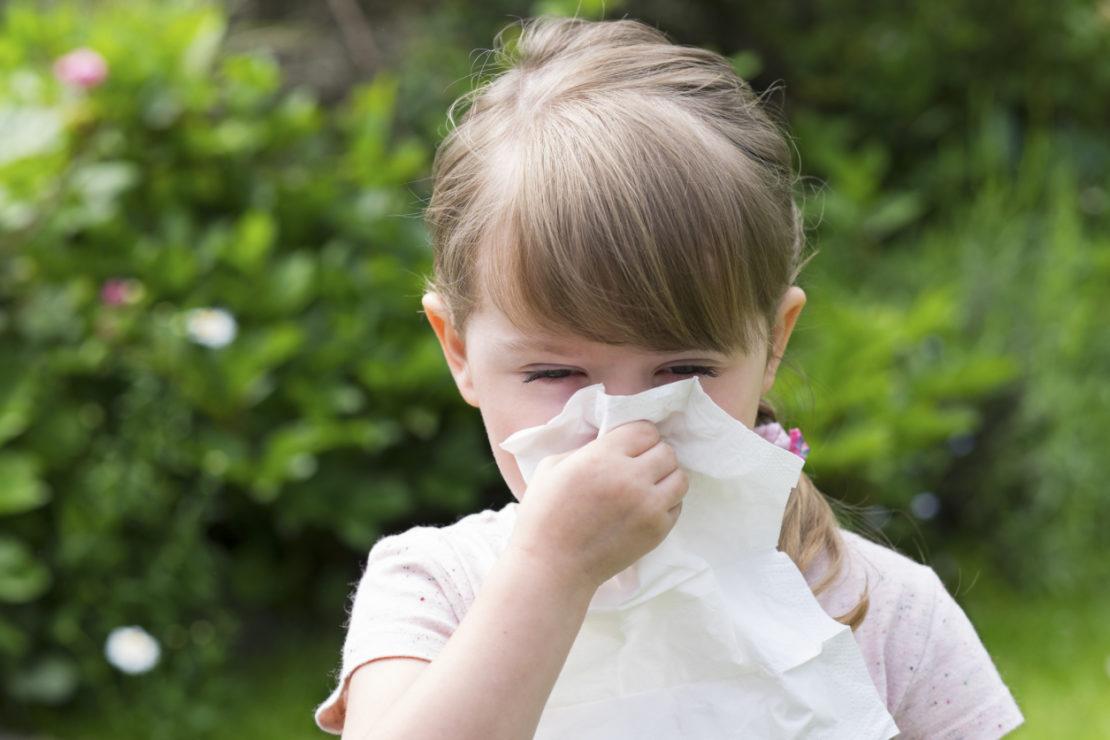 какие растения можно сажать аллергикам