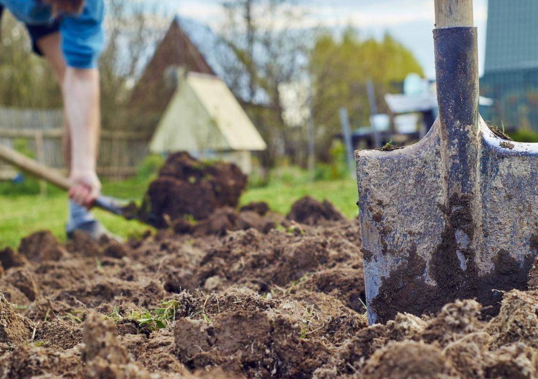 Вскапывание огорода