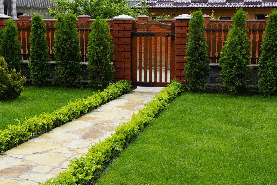 В какую погоду лучше удобрять газон