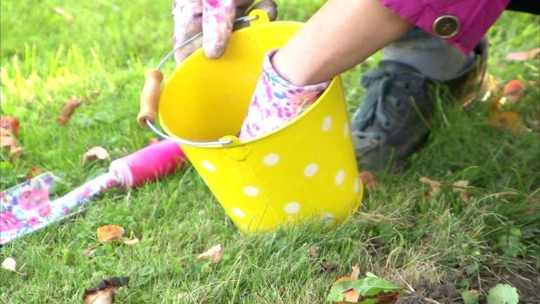 Дезинфекция садового инструмента известью и борьба с сорняками