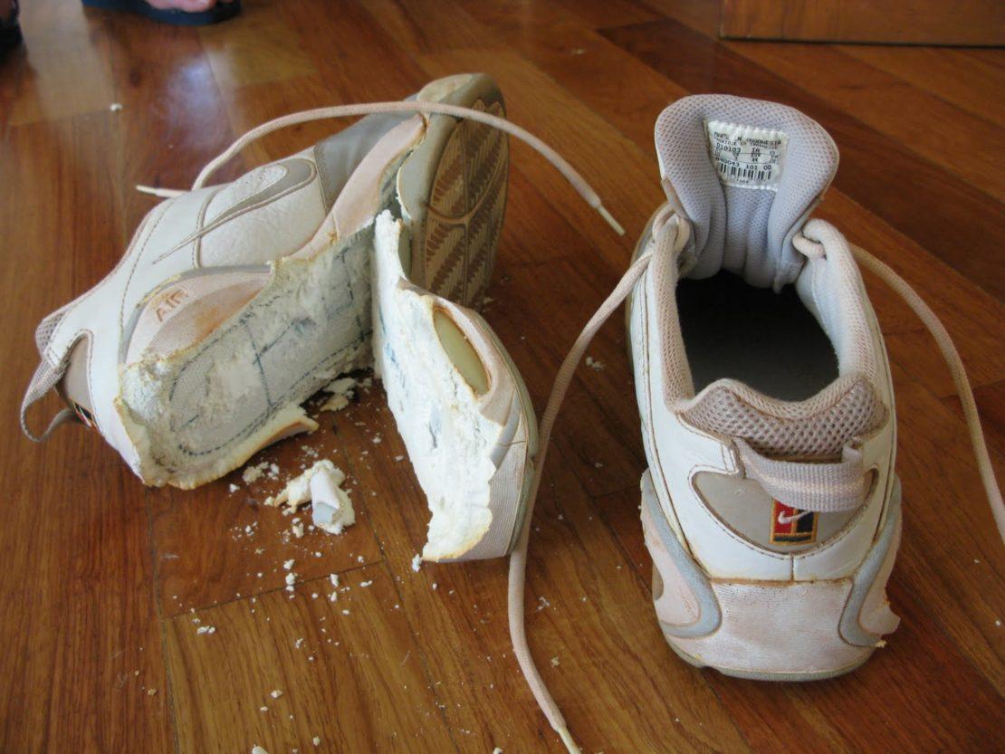 Правильная стирка обуви в стиральной машинке