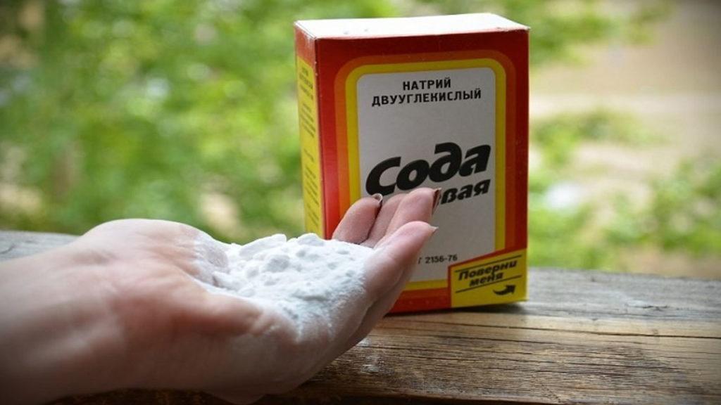 Необычные способы применения соды на даче