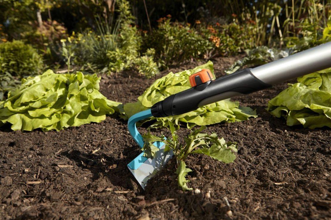 Как очистить ногти от грязи после работ в саду