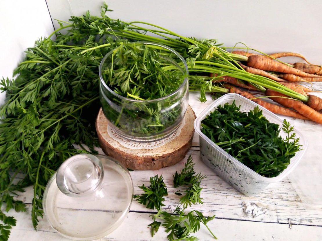 Способы заготовки морковной ботвы