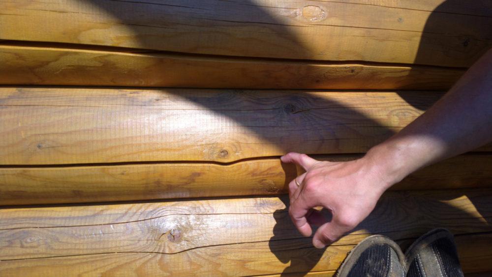Как и чем заделать трещины в дереве