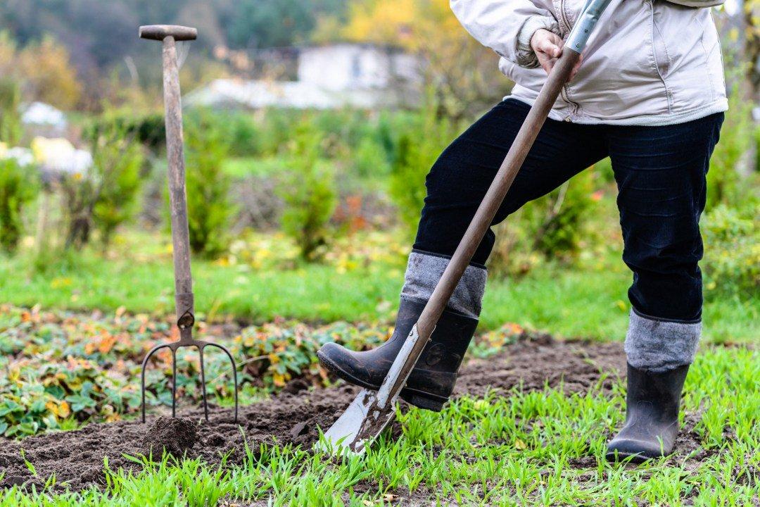 Как предупредить появление мозолей при работе с тяпкой и лопатой