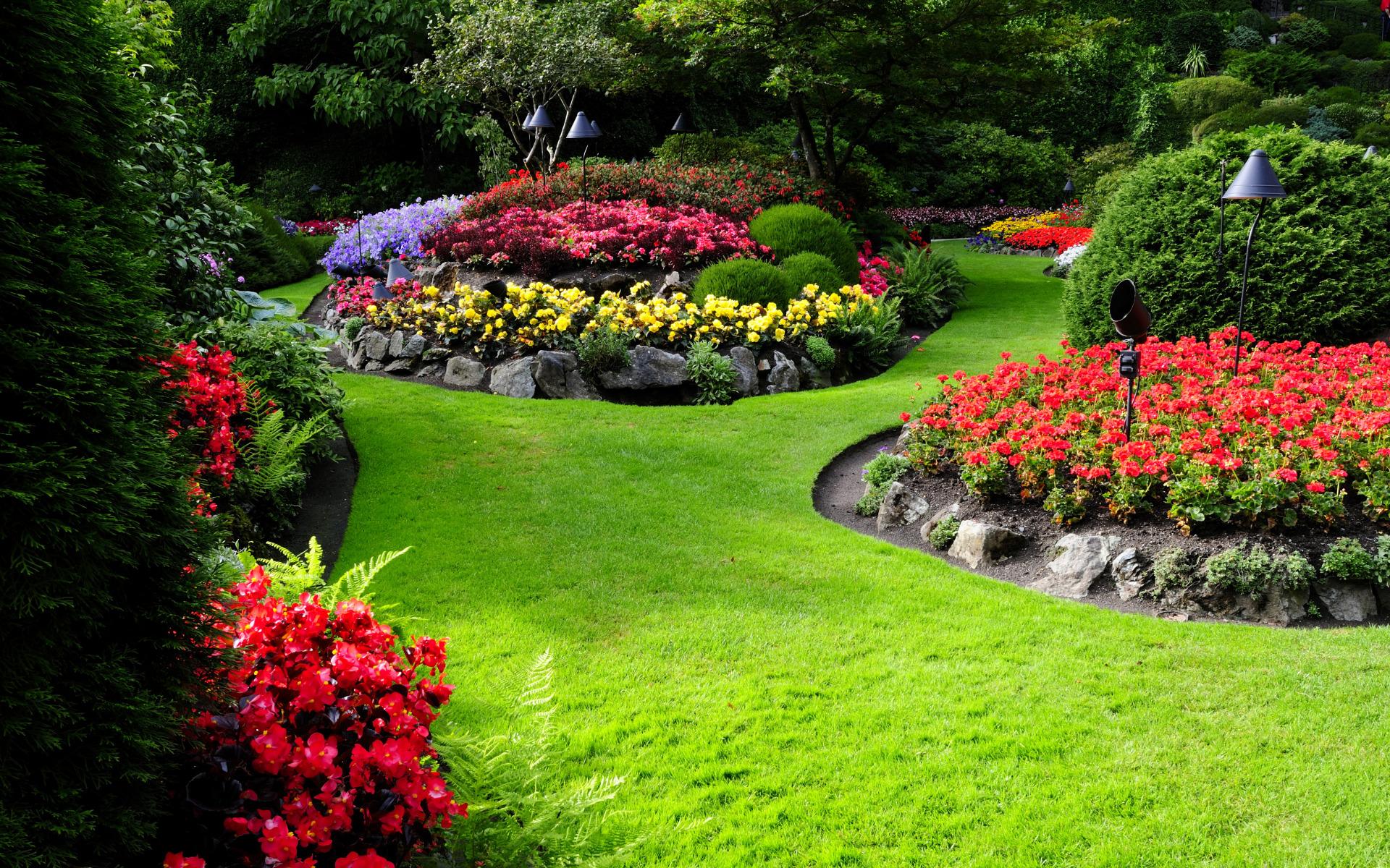 Дизайн цветников и газонов фото это