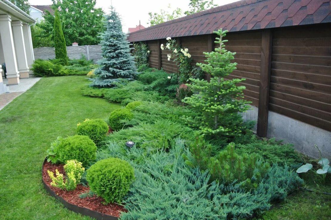 Ландшафтный дизайн с хвойными деревьями