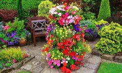 цветочная клумба на участке