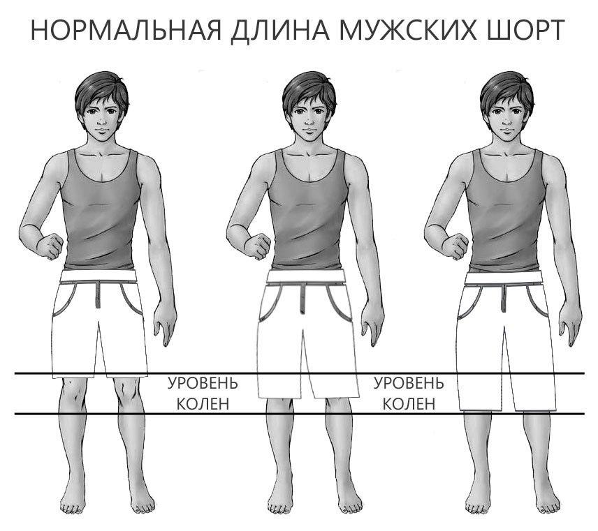 оптимальная длина шорт
