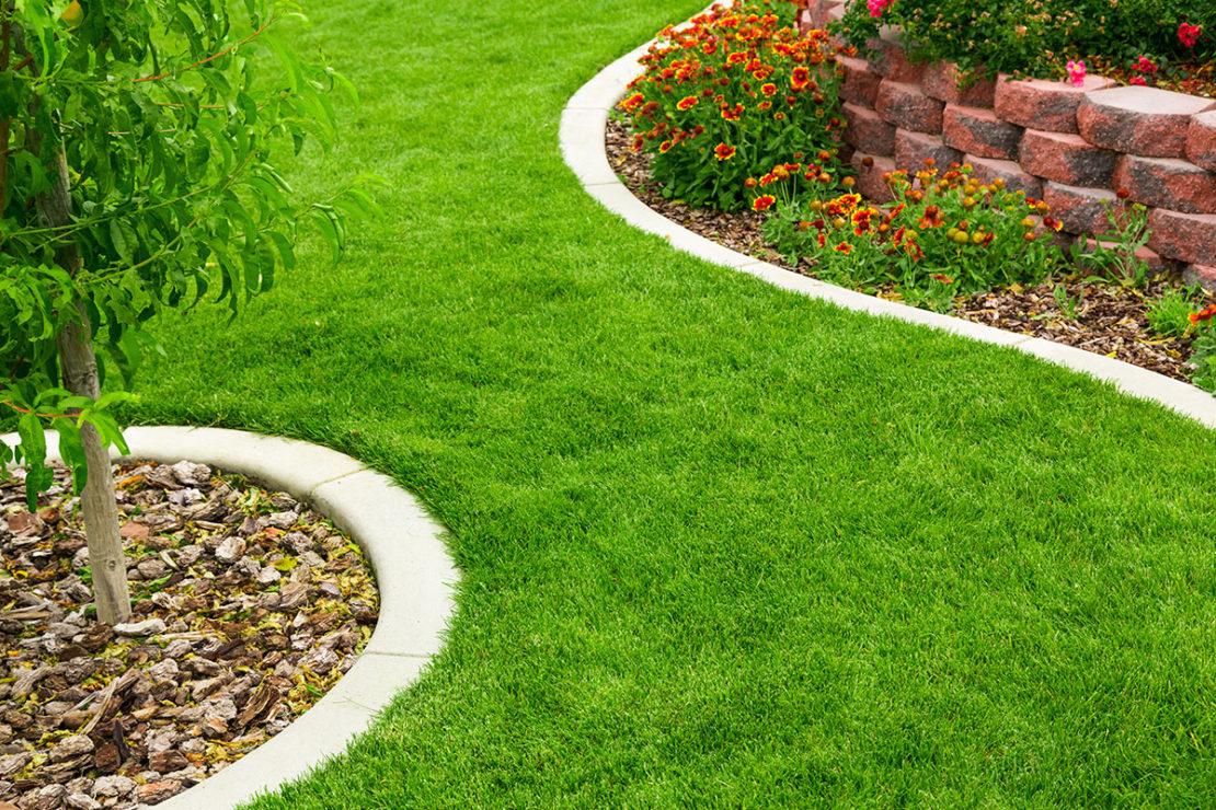 газоны в ландшафтном дизайне