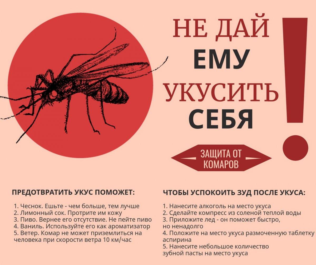 Общие меры безопасности от укусов комаров