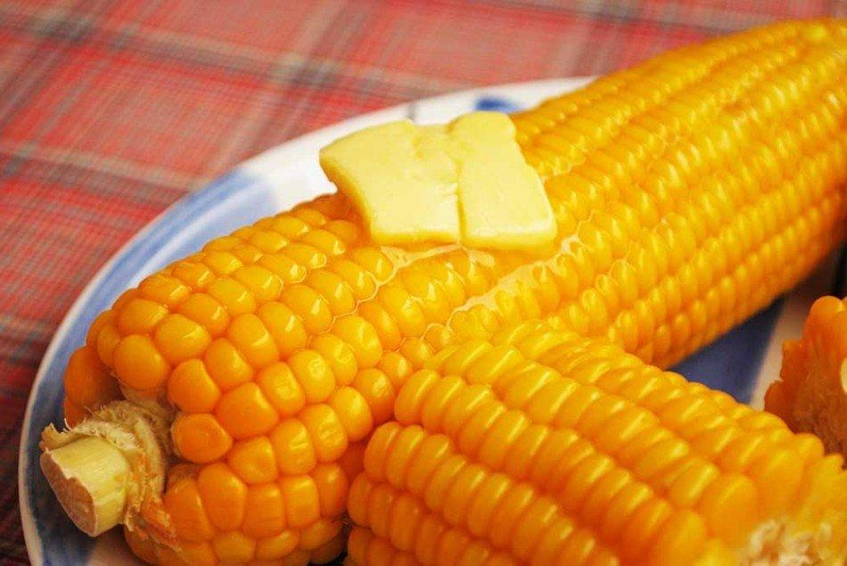 Что делать если кукуруза перезрела